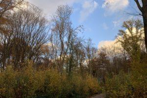 Rechener Park im Bochumer Ehrenfeld #boEhrenfeld