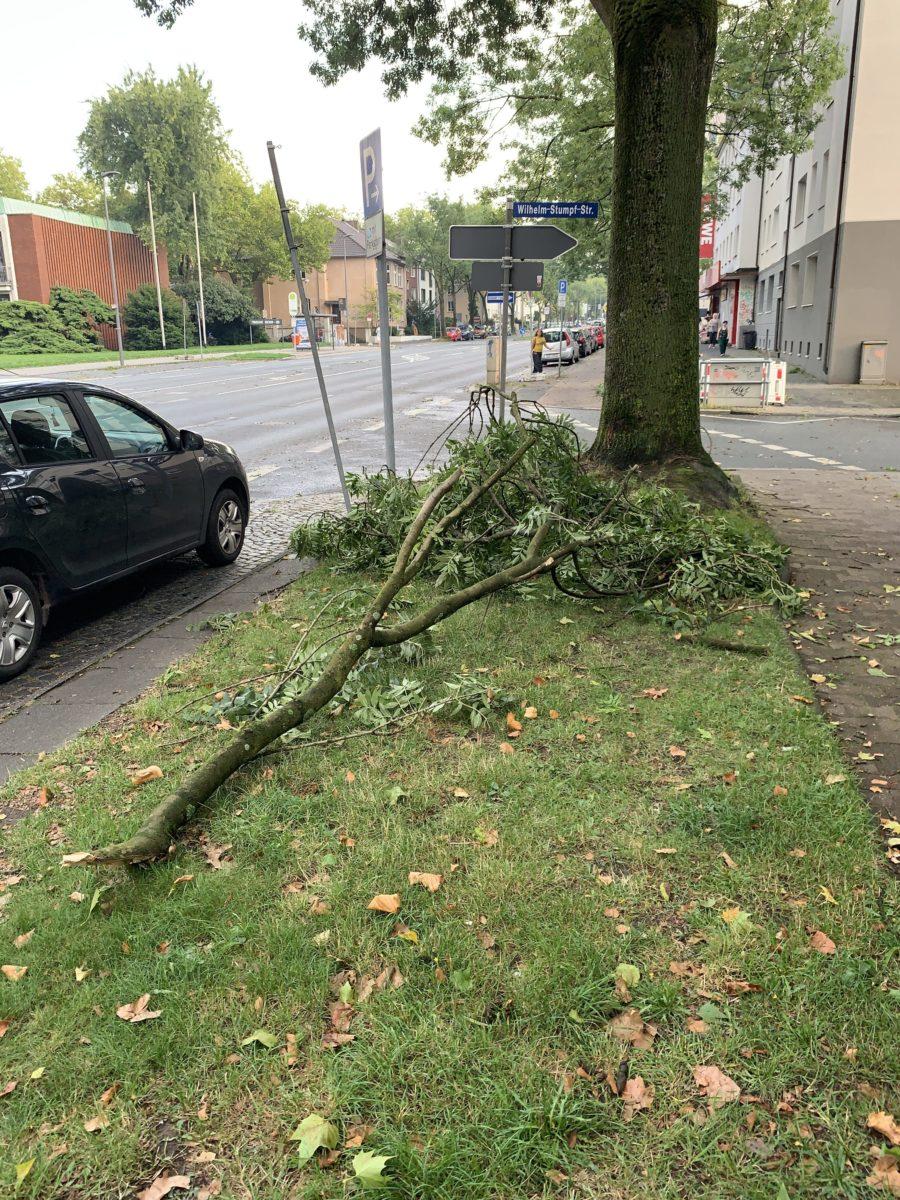 Sturm im Bochumer Ehrenfeld: abgefallene Äste auf der Königsallee / Wilhelm-Stumpf-Str.