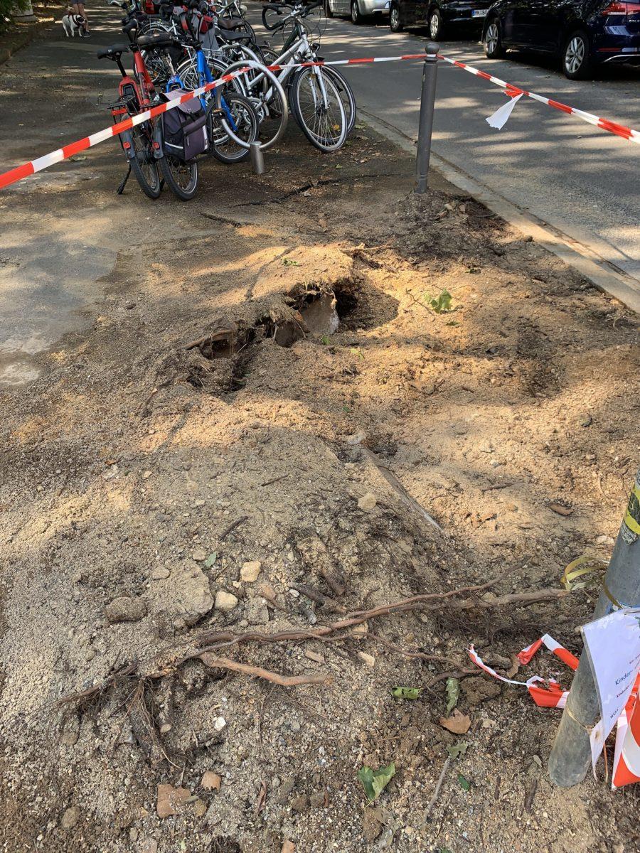 Sturm im Bochumer Ehrenfeld: hier stand der Baum am Hans-Ehrenberg-Platz
