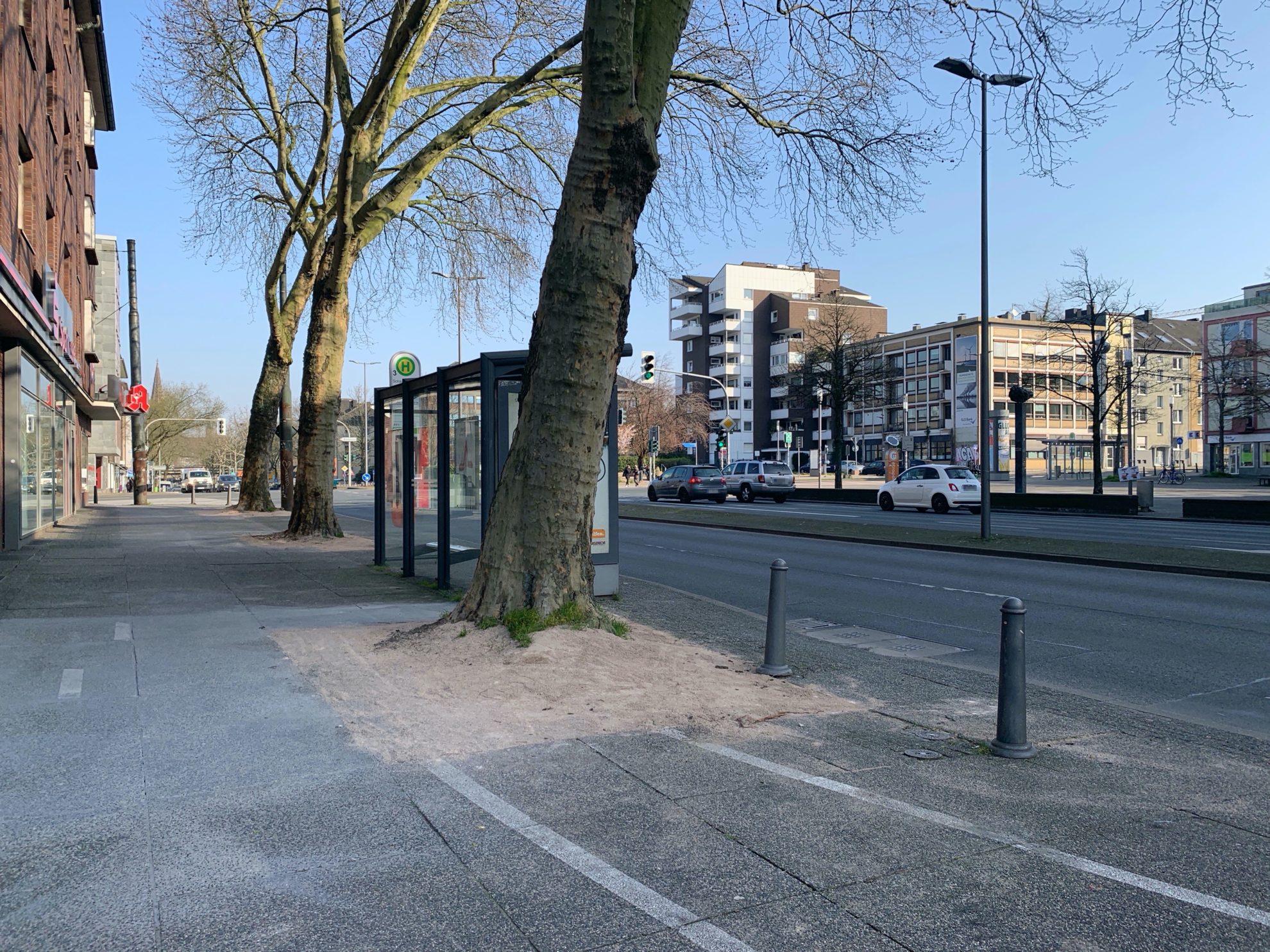 (wieder geöffnete) Bogestra-Haltestelle Schauspielhaus an der Königsallee (vor der Sparkasse und der Apotheke) - mit dem sanierten Gehweg an den Baumscheiben