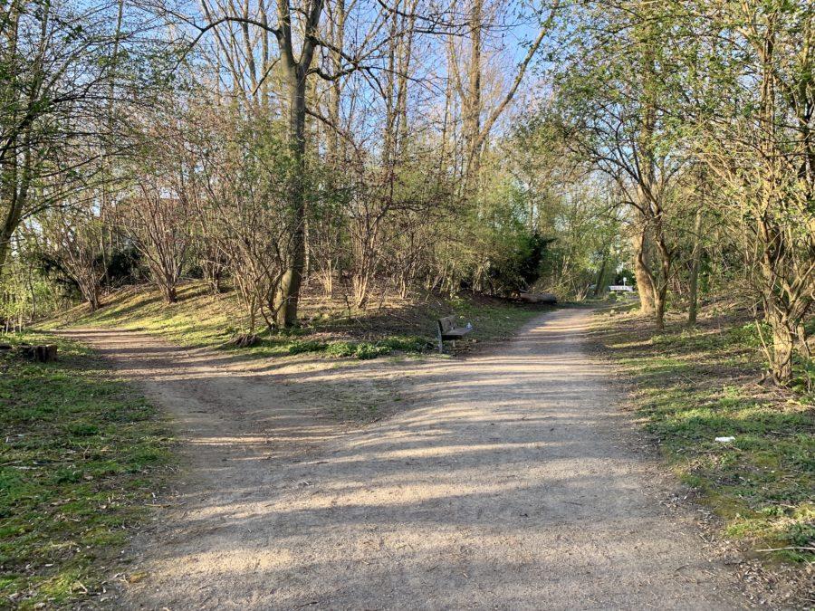 Wege im Friederika-Wäldchen