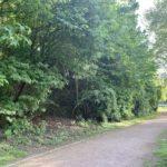 Grünzug parallel zur Hattinger Straße